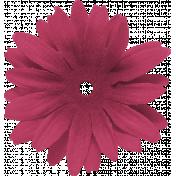 Scotland Flower 1
