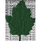 Scotland Leaf 1
