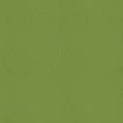 Scotland Solid Paper Green3