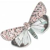 Sugar Sweet Butterfly