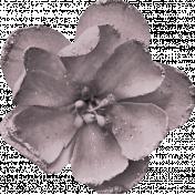 Thankful Harvest Flower 5