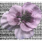 Create Something Flower 138