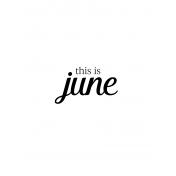 Month Pocket Card 04 June 3x4