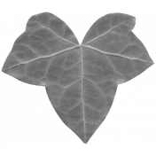 Leaves No.2- Templates- Leaf 16