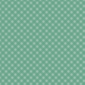The Guys- Papers- Teal Gingham