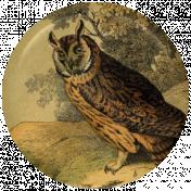 Picnic Day Flair- Owl