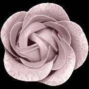Winter Day- Elements- Flower Pink