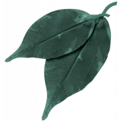 Winter Day- Element- Leaf 2