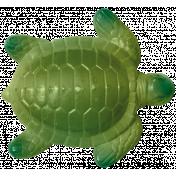 Baby On Board- Elements- Turtle