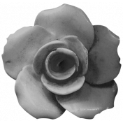 Flowers #02- Templates- Flower 10
