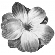 Flowers #02- Templates- Flower 12