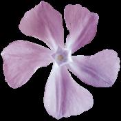 Secret Garden - Elements - Flower Lilac
