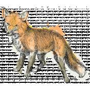 Secret Garden- Elements- Watercolour Fox