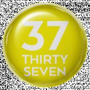 New Day- Brads 52 Weeks- Yellow- Brad 37