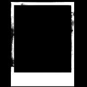 Fresh - Spill Frames - Polaroid