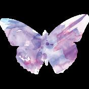 Butterflies- Butterfly 07