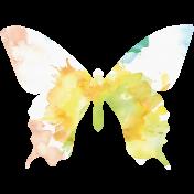 Butterflies- Butterfly 09