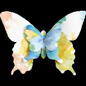 Butterflies- Butterfly- Stapled 01
