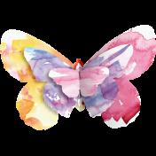 Butterflies- Butterfly- Stapled 04