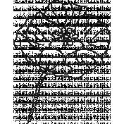 Drawn Flowers- Templates- Sketch Papaver