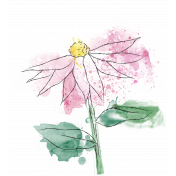 Mixed Media 5- Elements- Echinacea Stamp