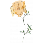 Mixed Media 5- Elements- Eschscholzia Stamp