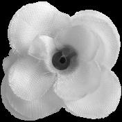 Flower 032
