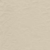 Winter Arabesque- Solid Tan Paper