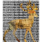 Animal Kingdom- Deer 1