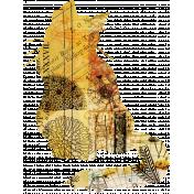 Animal Kingdom - Cat 1 Shape