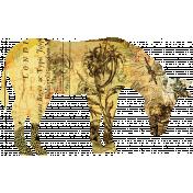 Animal Kingdom- Donkey