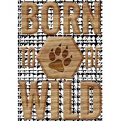 Animal Kingdom- Born To Be Wild Word Art