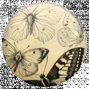 Jane- Butterfly Brad