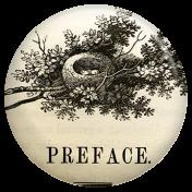 Jane- Preface Brad