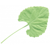 Good Day- Elements- Leaf 2