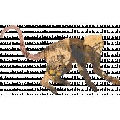 Animal Kingdom- Zoo Collage- Monkey