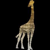 Animal Kingdom- Zoo Collage- Giraffe