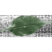 XY- Elements- Leaf