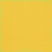 XY- Paper Kit- Painted Solid Yellow