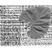Leaves- Templates- Leaf 2