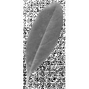 Leaves- Templates- Leaf 5