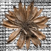 Autumn Day- Elements- Dried Flower 01
