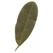 Autumn Day- Elements- Leaf 6