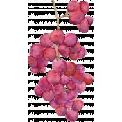 Pour Me A Wine- Elements- Watercolor Grapes