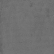 Gesso Canvas- Textures- Gray 1