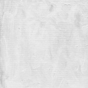 Gesso Canvas- Textures- White 2