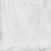 Gesso Canvas- Textures- White 4