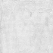 Gesso Canvas- Textures- White 6