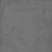 Gesso Canvas- Textures- Gray 7