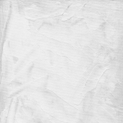 Gesso Canvas- Textures- White 8